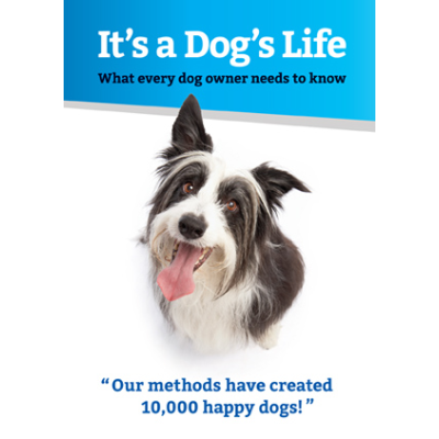 Cover picture of the DVD showing a cute hairy dog