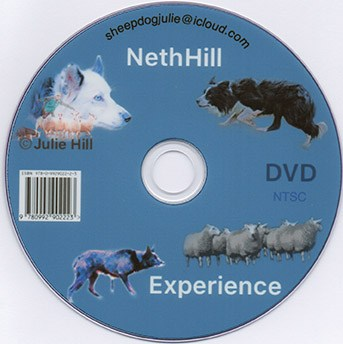 A picture of the DVD