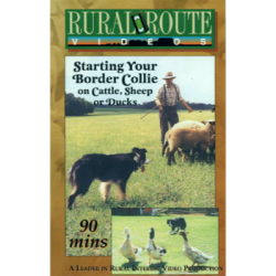 Starting Your Border Collie on Cattle Sheep or Ducks (DVD)