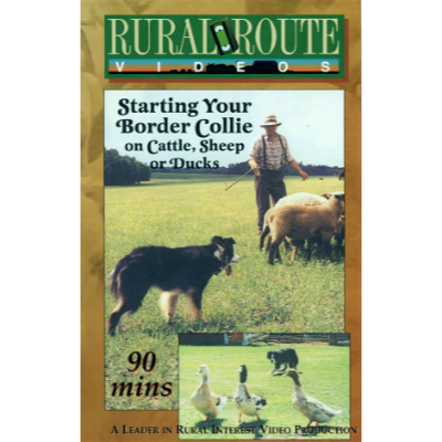 Cover picture of the DVD showing a man training a sheepdog