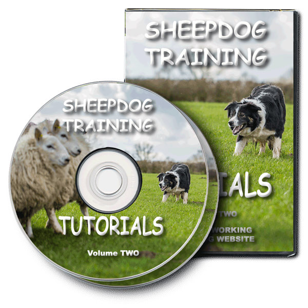 The DVD version of our online sheepdog training tutorial videos, volume two
