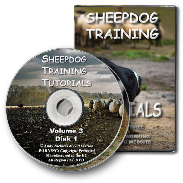 The DVD version of our online sheepdog training tutorial videos - volume three