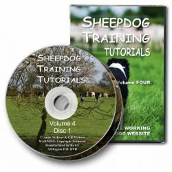 Sheepdog Training Tutorials 4 (DVD)