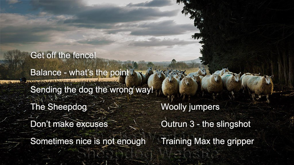 Picture showing the chapters available on volume three of our sheepdog training tutorials DVD