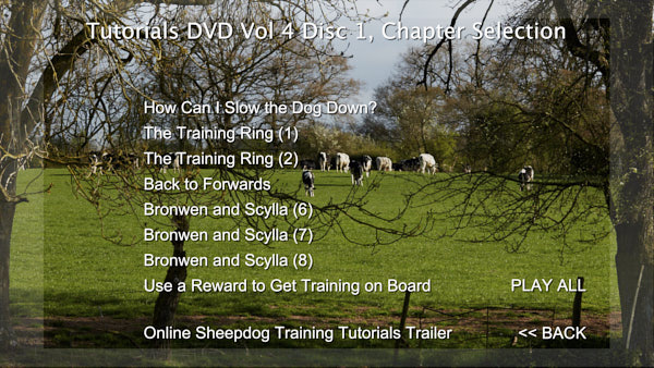A photo of cattle grazing in a field with a list of DVD chapters
