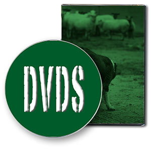 A little icon to show you that we sell DVDs in our shop